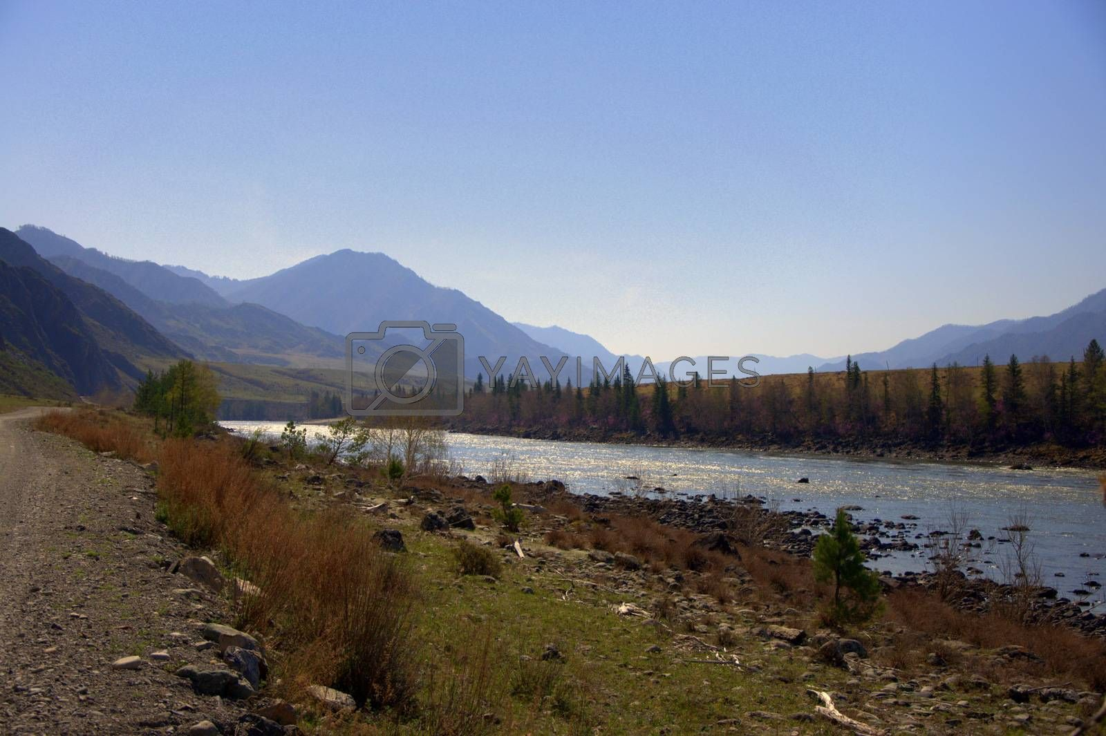 Dirt road along the Katun riverbed. Altai, Siberia, Russia. by Alex Yellow