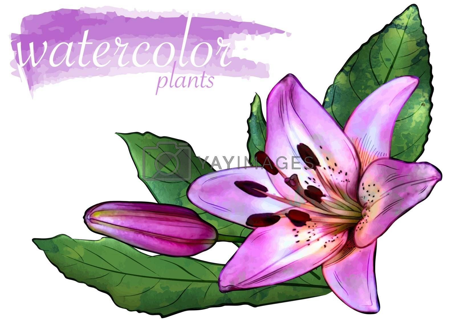 Purple Watercolor Flower with Leafs by illustratorCZ