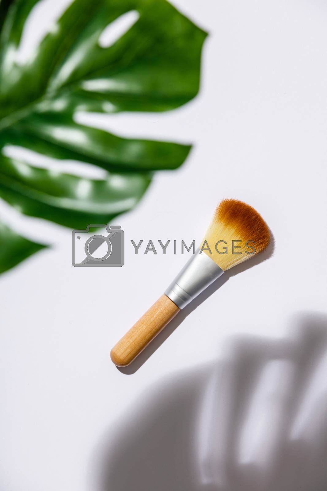makeup brush and monstera leaves on a white background by klenova