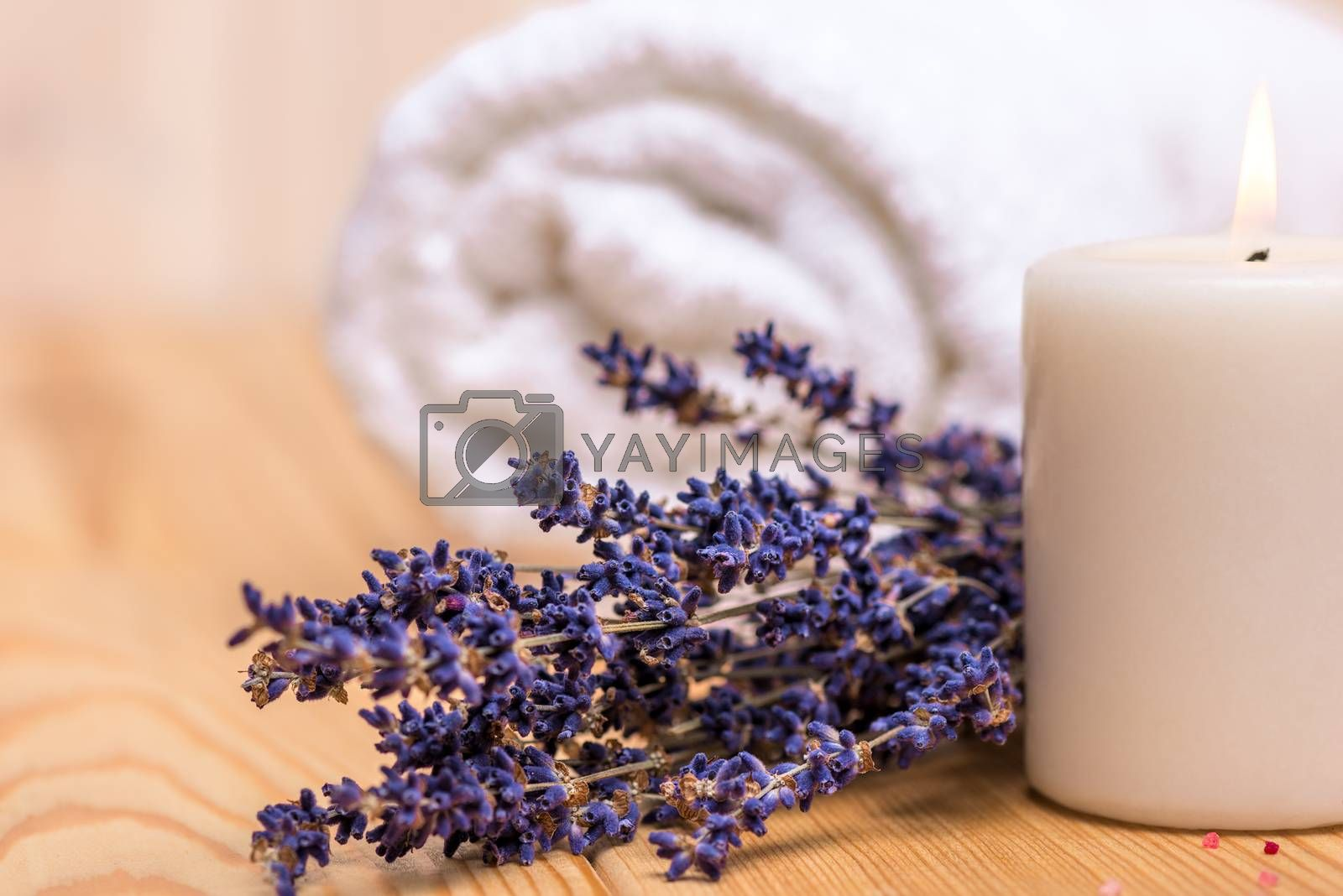 macro shot of dried lavender and burning candle by Labunskiy K.