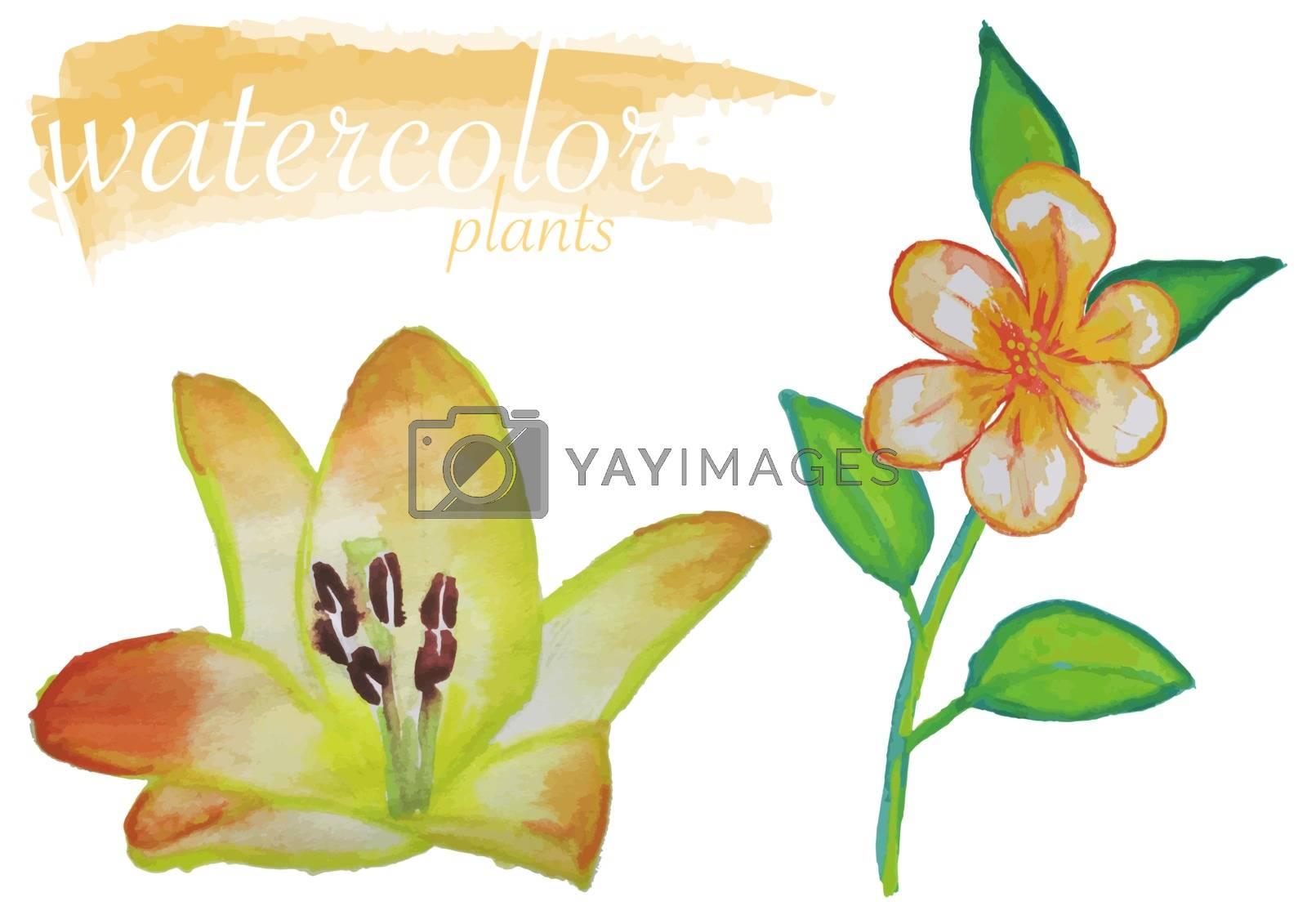 Yellow Watercolor Flower Set by illustratorCZ