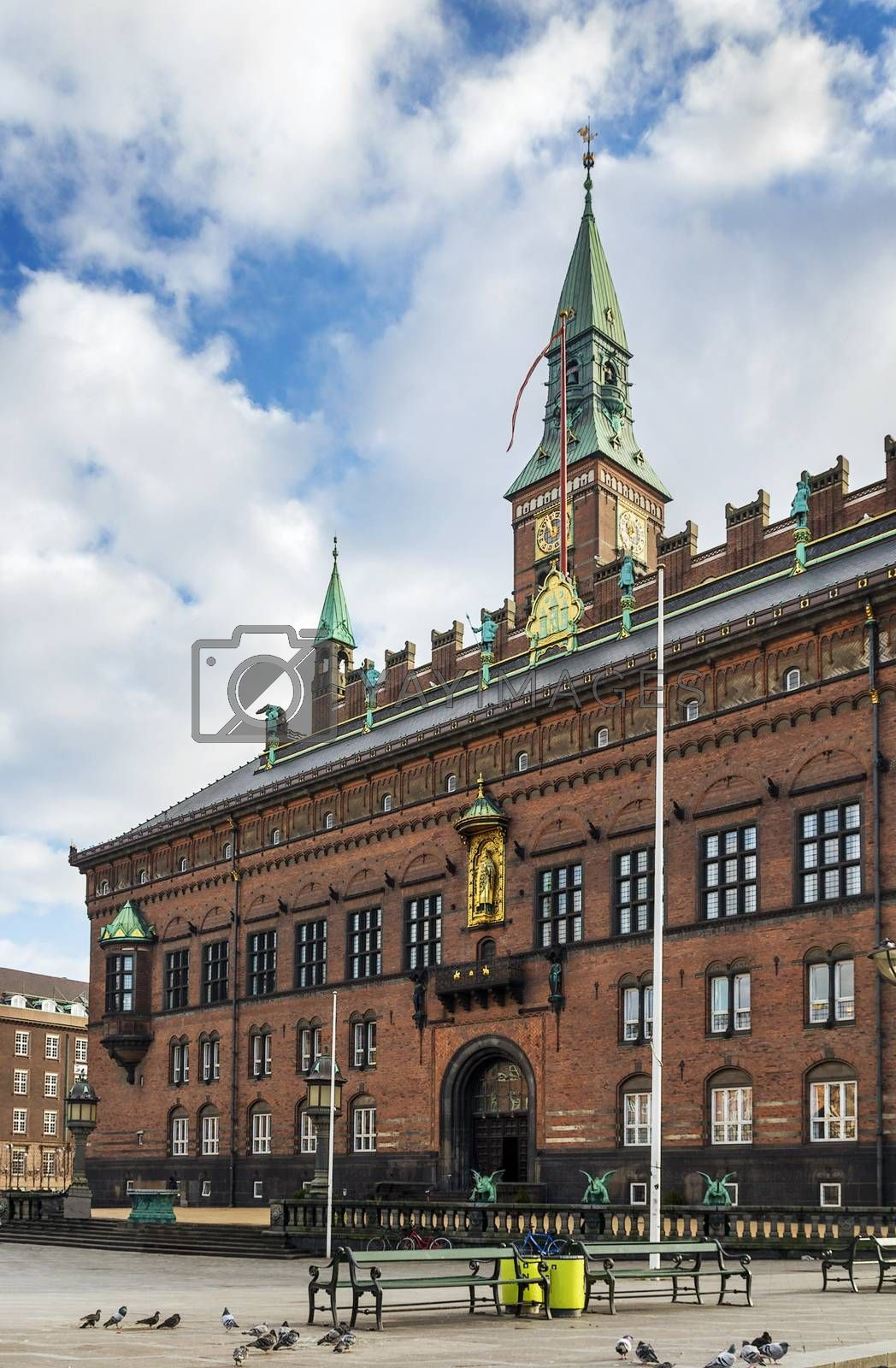 Copenhagen City Hall by borisb17