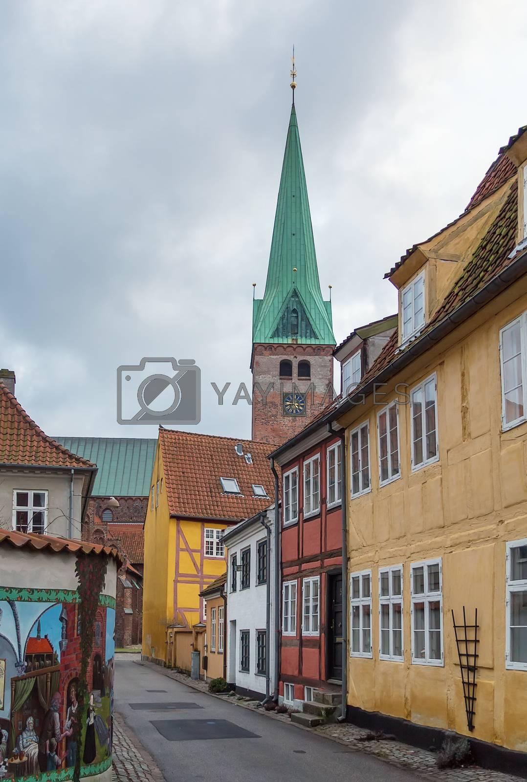 street in  Helsingor, Denmark by borisb17
