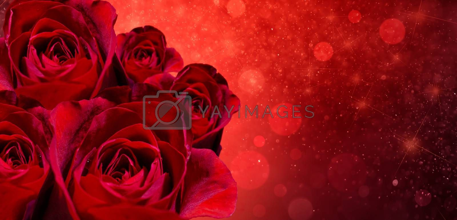 Banner Red rose bokeh red background Have space to enter text by Sarayut