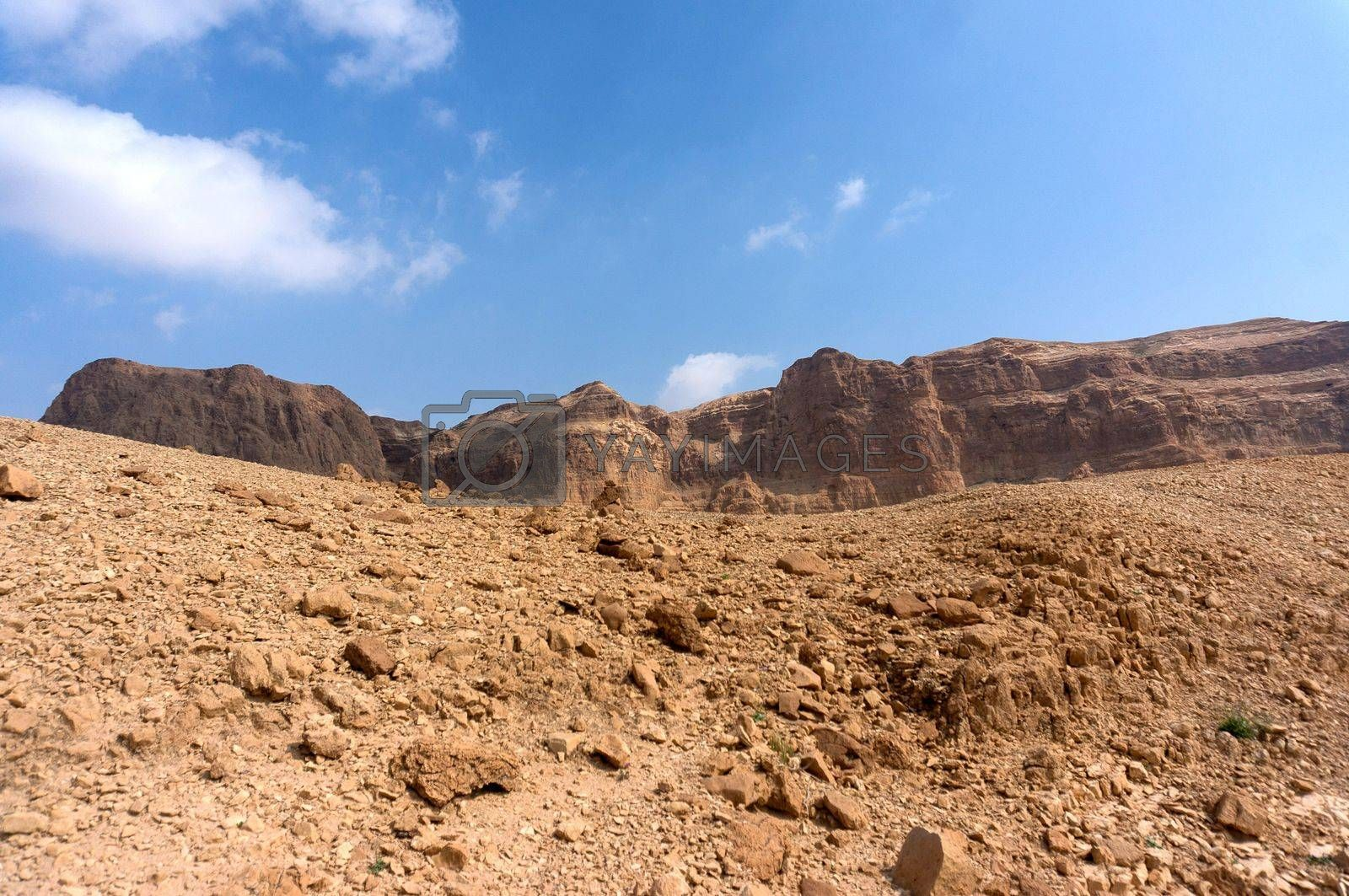 Desert vacation travel in Israel of Middle East by javax