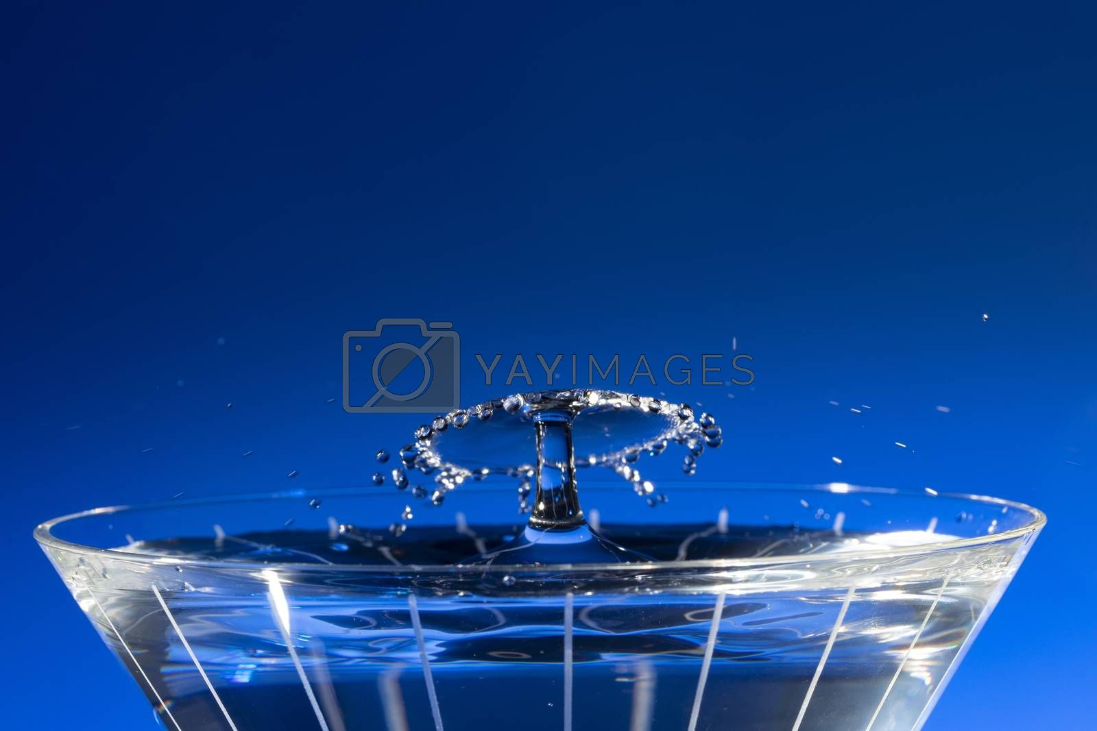 Water Drops Collide Over Martini Glass Blue by Charlie Floyd