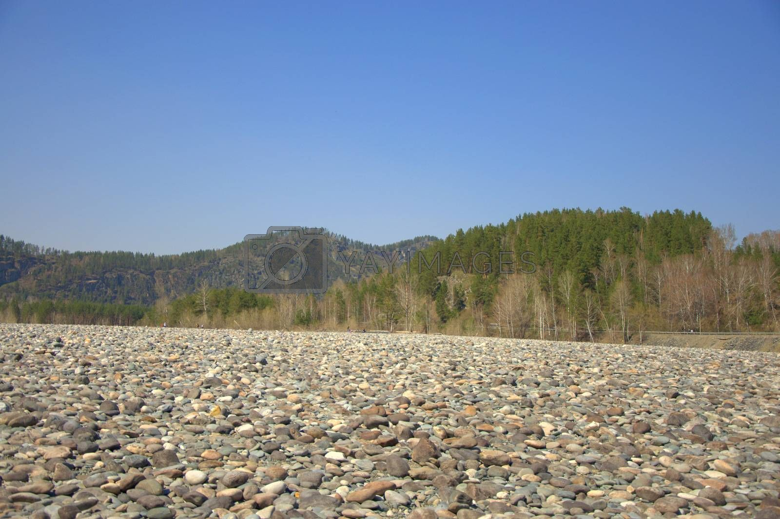 Pebbles on the long and long bank of the Katun. by Alex Yellow