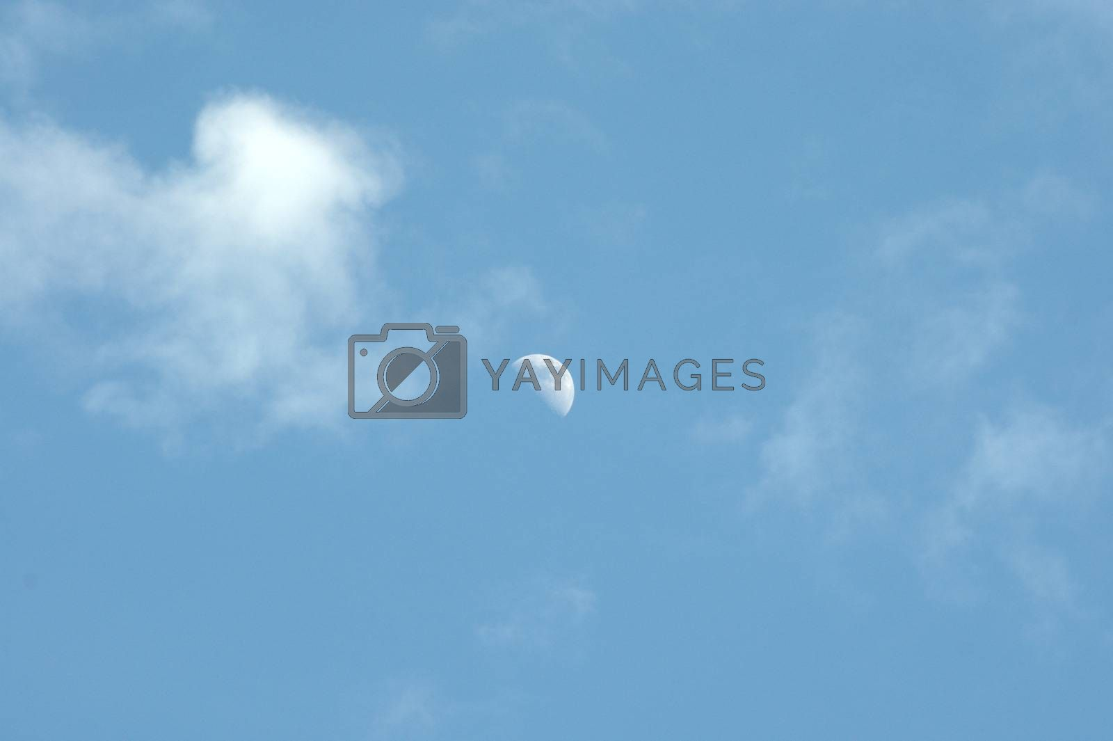 Moon in the sky, against the background of white cumulus clouds. Skyscape. by Alex Yellow