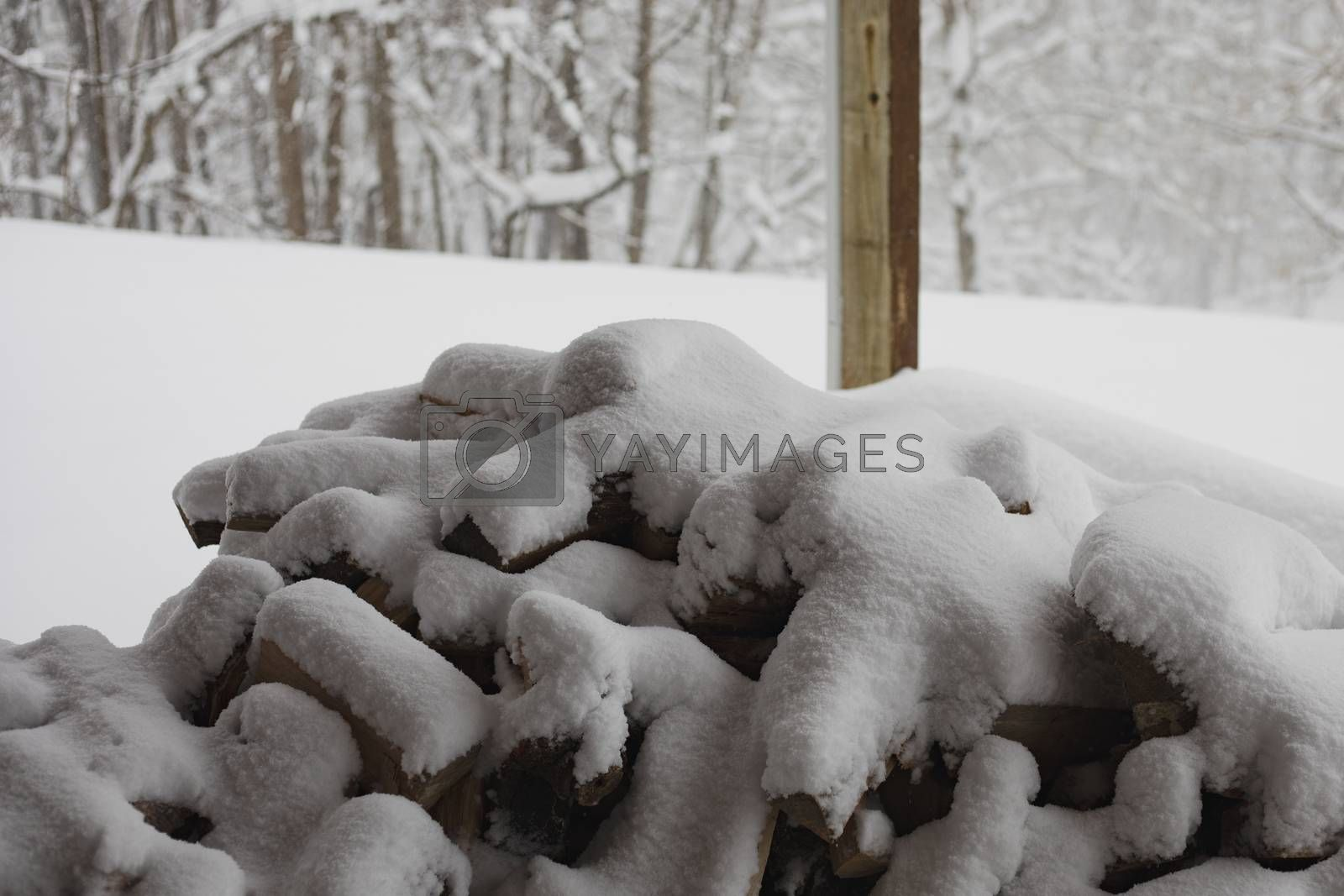 Wood pile is covered with snow following Winter Storm Diego.