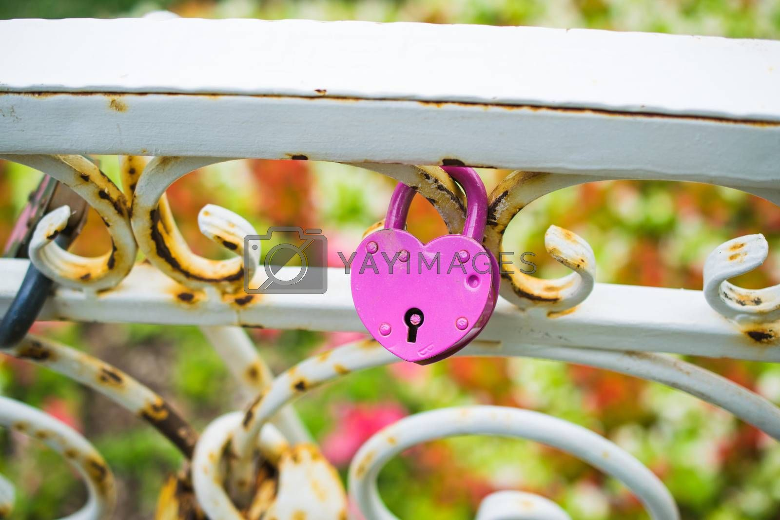 wedding tradition - locks on the bridge or fence by Sorokinsamara
