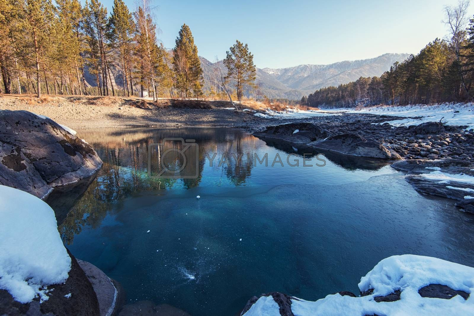 Crystal pure water of blue lake in Altai mountains