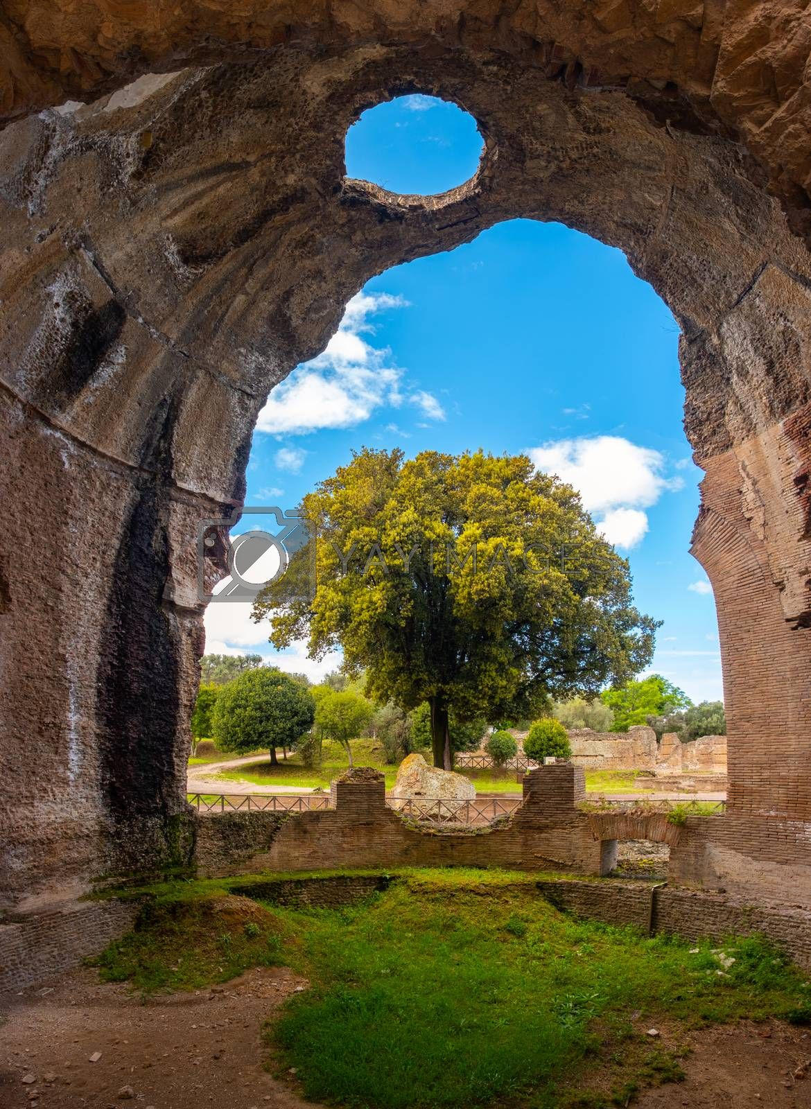 Villa Adriana - Rome Tivoli - Italy -  large tree seen through  large chasm on walls of ancient Roman palace with  circle-shaped hole on ceiling .