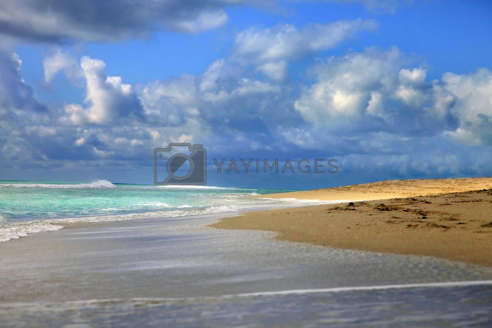 View of the Atlantic Ocean. South Beach Miami