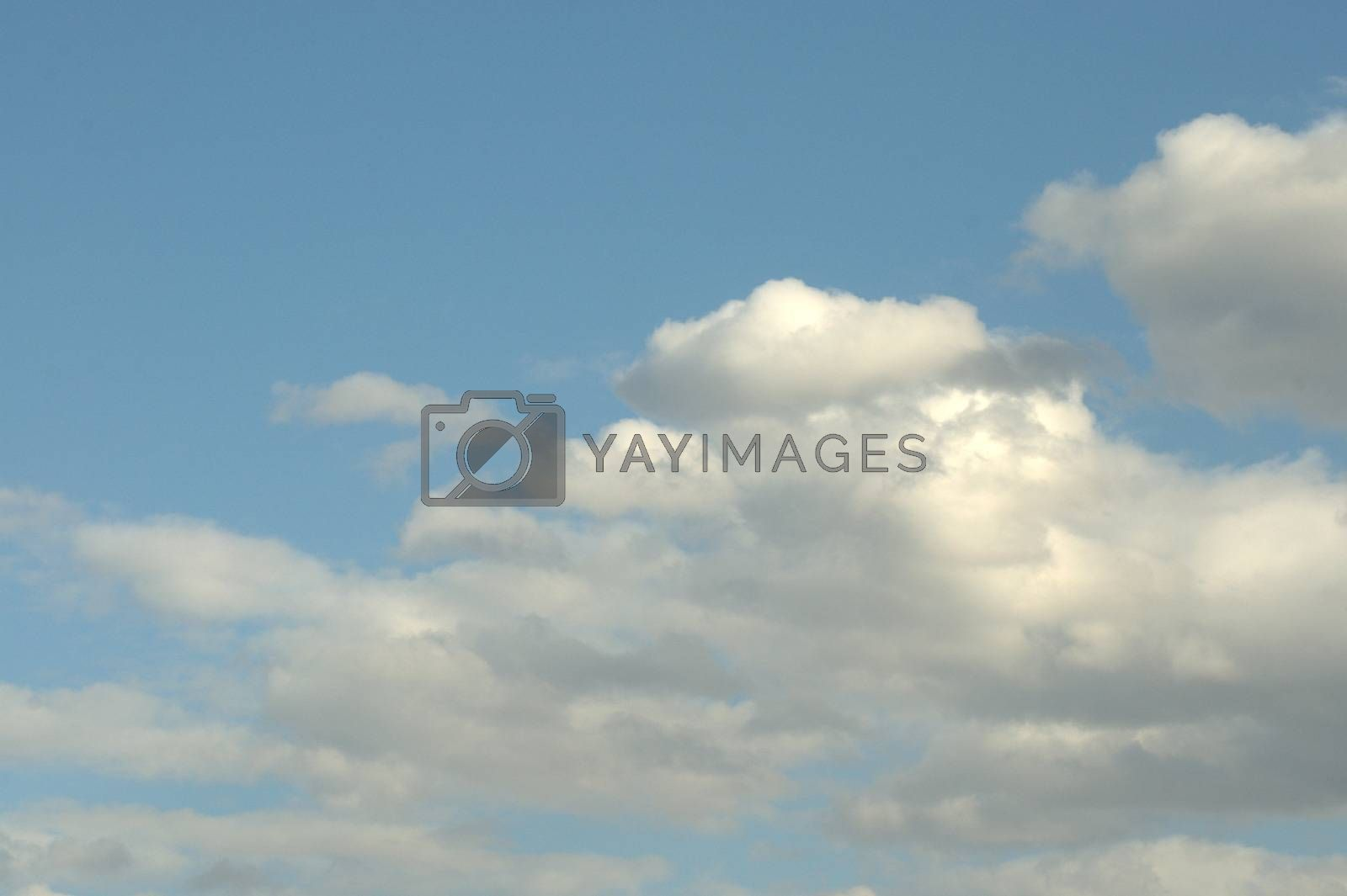 White and fluffy cumulus clouds against a clear blue sky.