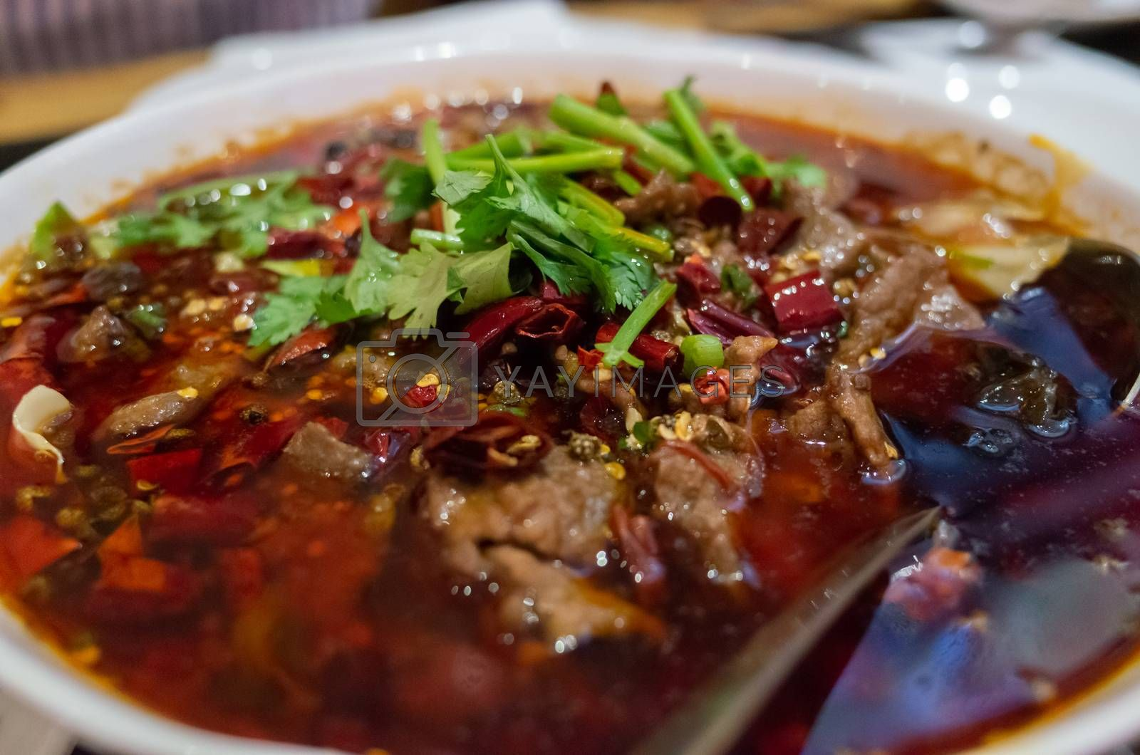 Royalty free image of Sze Chuan Spicy Hot Pot Beef Dish by kstphotography