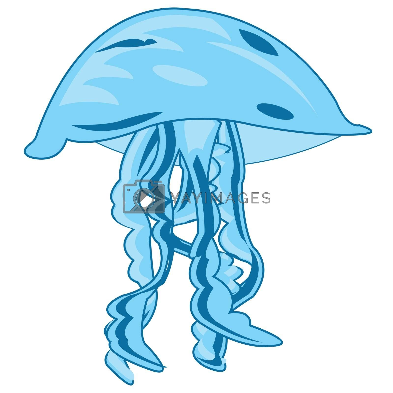 Vector illustration sea animal medusa drawing on white background
