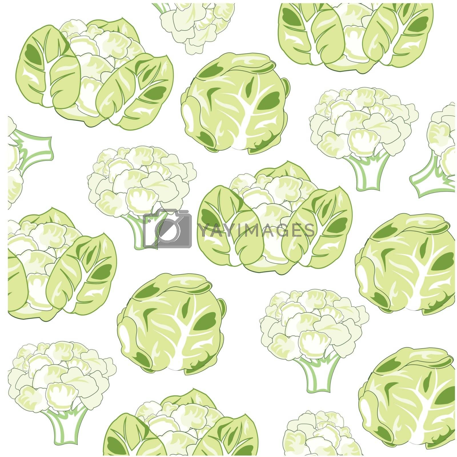 Sort of the cabbage pattern on white background is insulated