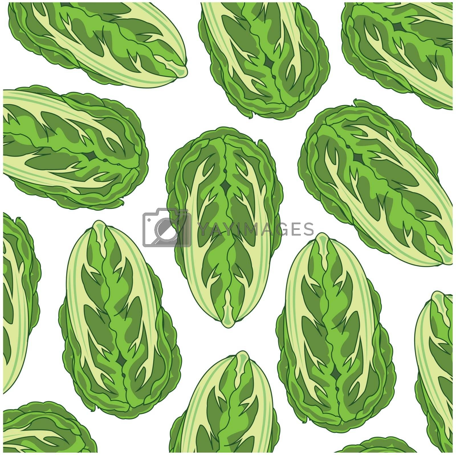 Vector illustration of the decorative pattern cabbage chinese