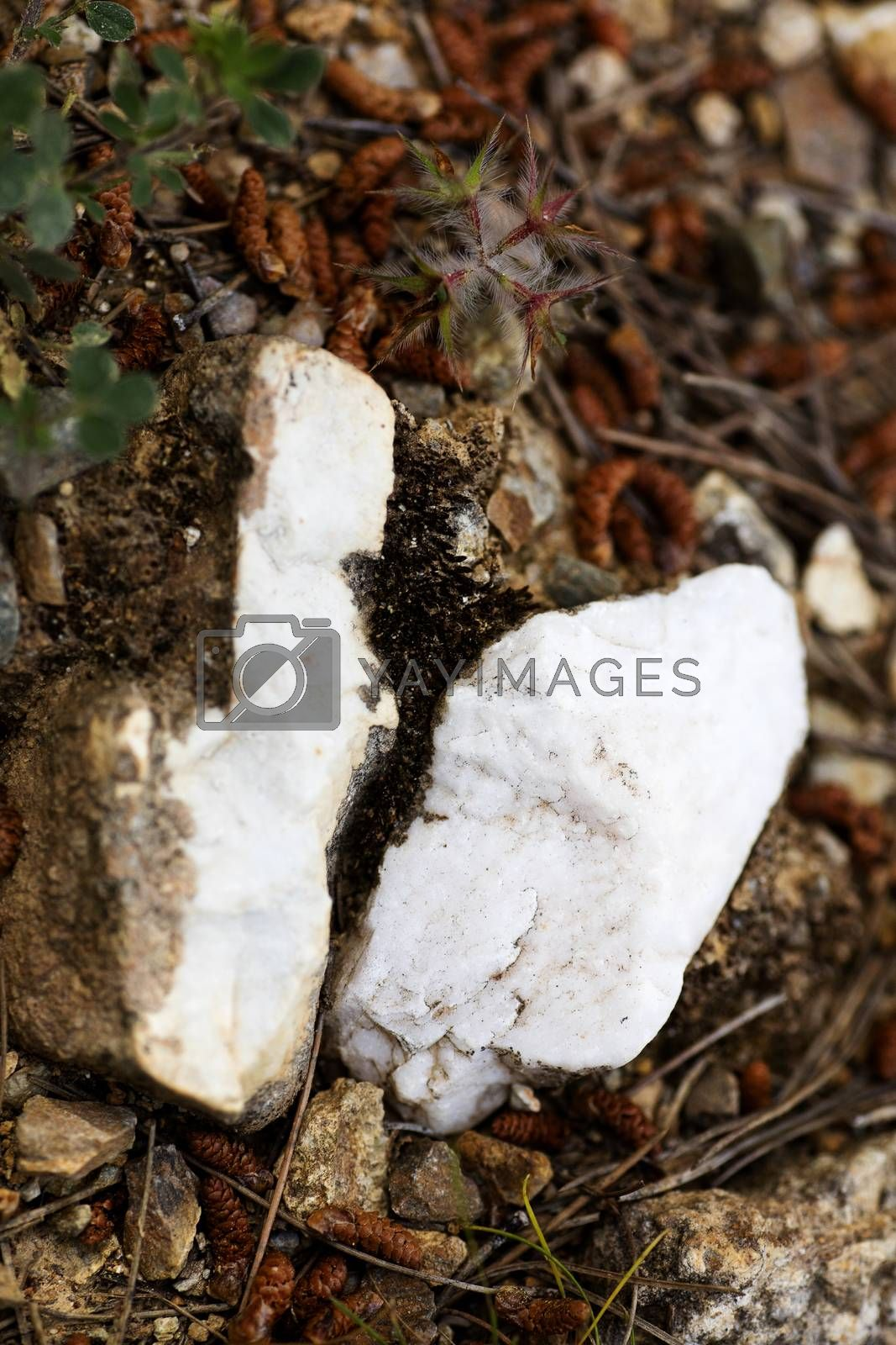 Ying yang stones macro background fine art in high quality prints products