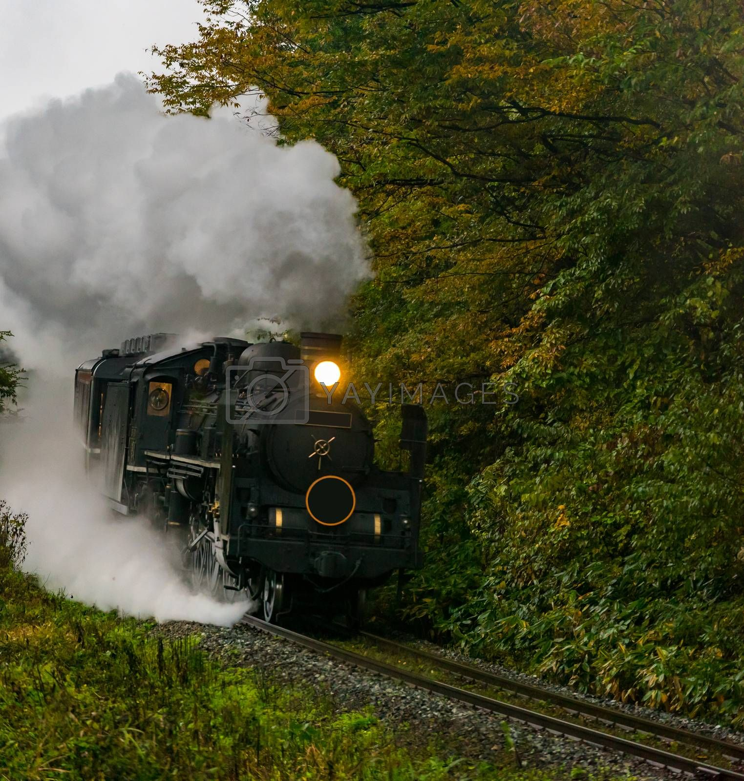 steam locomotive in autumn forest at Fukushima Japan