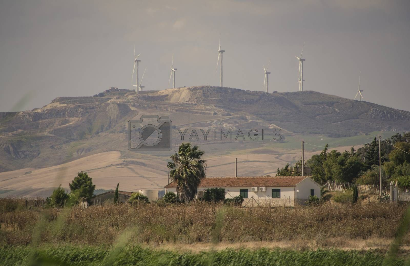 Wind turbines placed on top of a hill in Sicily, Italy, for the production of electric energy...