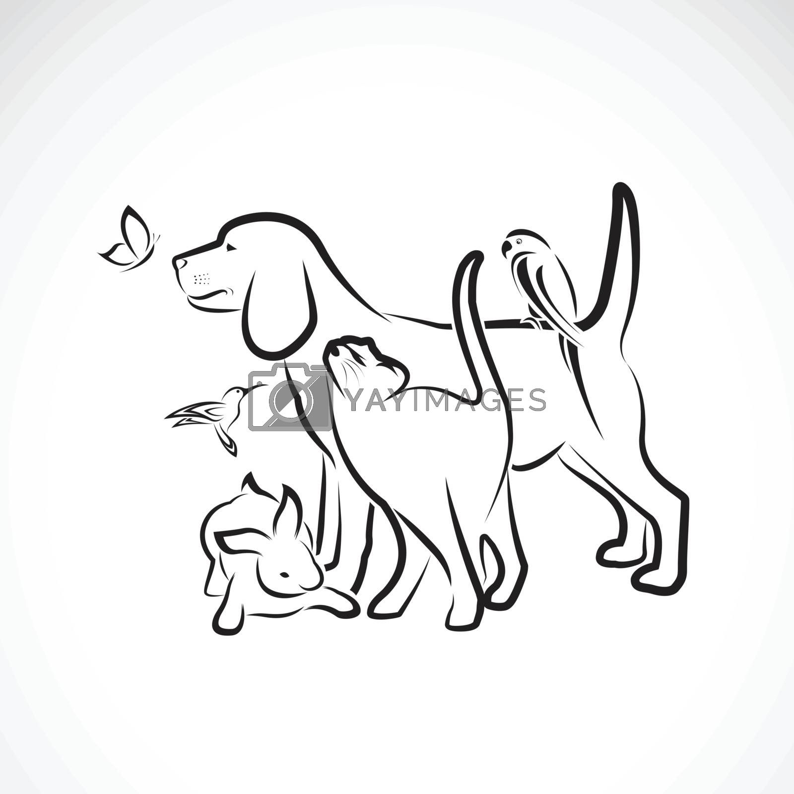 Vector group of pets - Dog, Cat, Parrot, Rabbit, Butterfly, Hummingbird, isolated on white background. Pet. Animals. Easy editable layered vector illustration. Pet group.