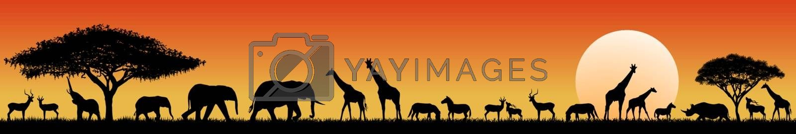 Silhouettes of wild animals of the African savannah. Set of different wild animals of Africa.