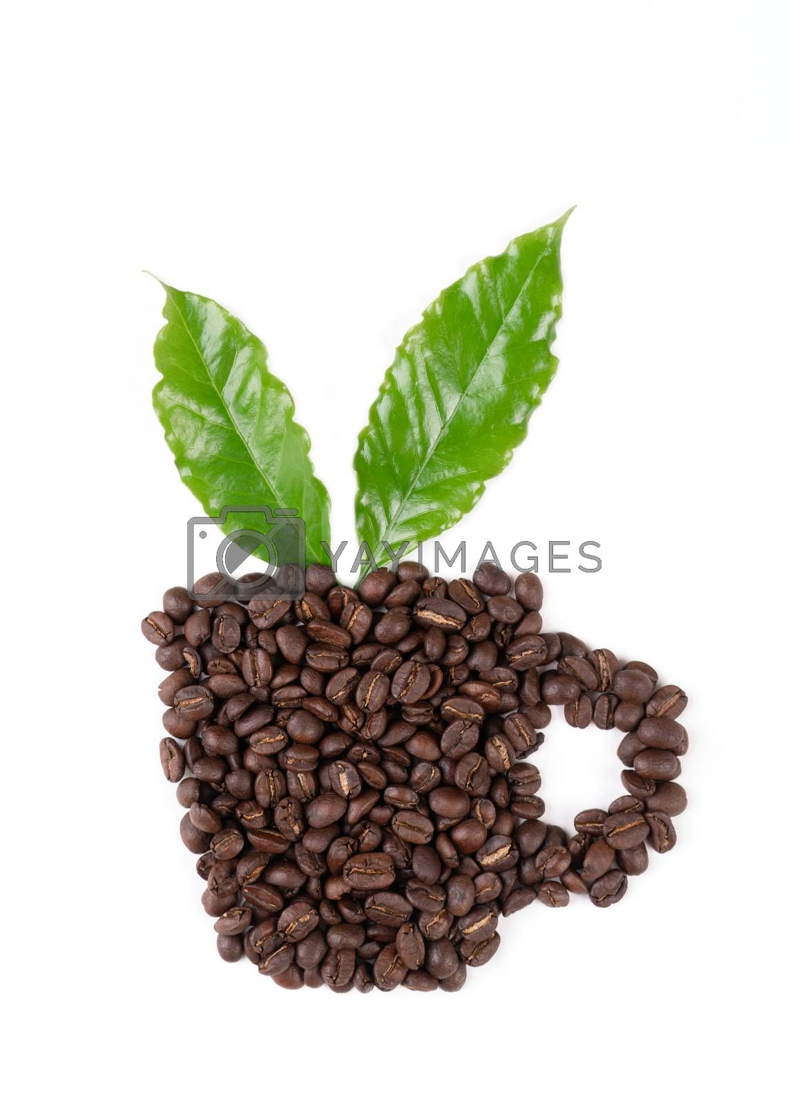 roasted coffee bean with leave on white background by anankkml