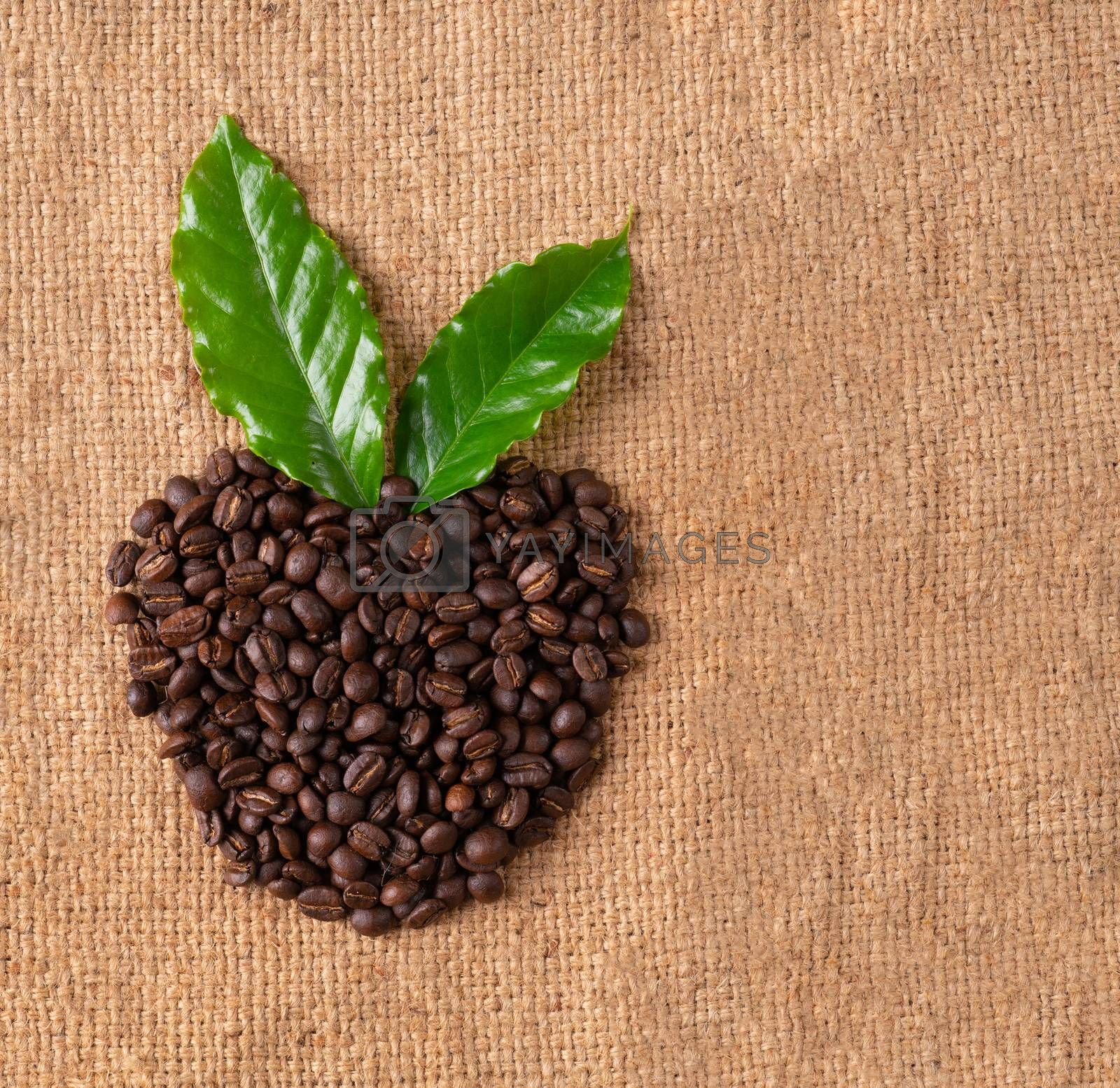roasted coffee bean on linin sack by anankkml