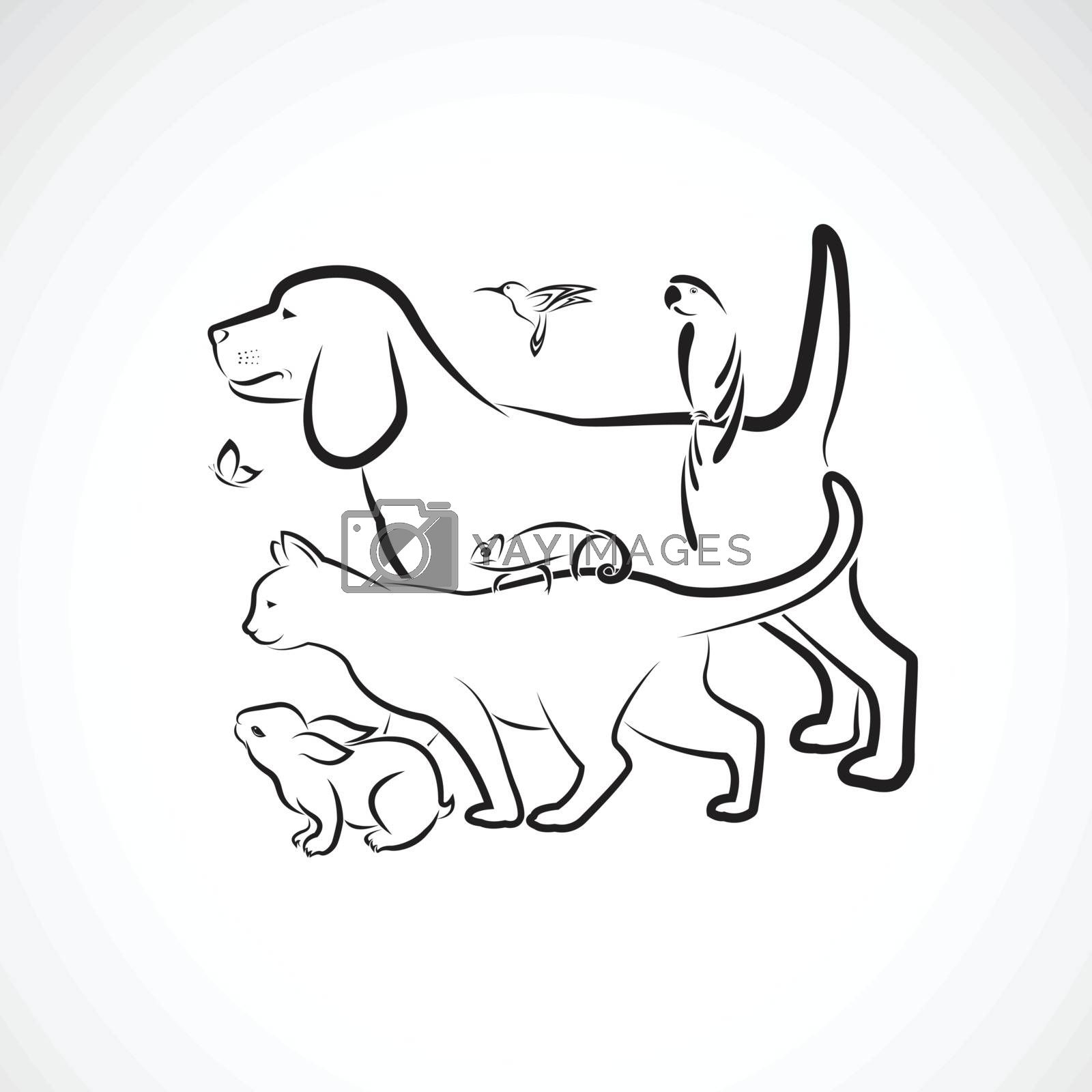 Vector group of pets - Dog, Cat, Parrot, Rabbit, Butterfly, Hummingbird,  Chameleon, isolated on white background. Pet. Animals. Easy editable layered vector illustration. Pet group.