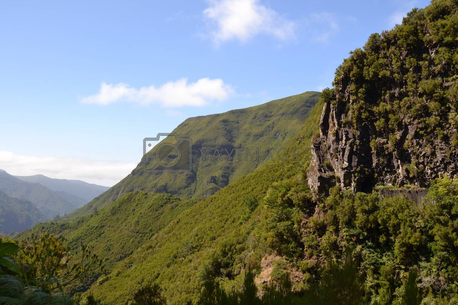 Nice view of the mountain on the island of Madeira, Portugal