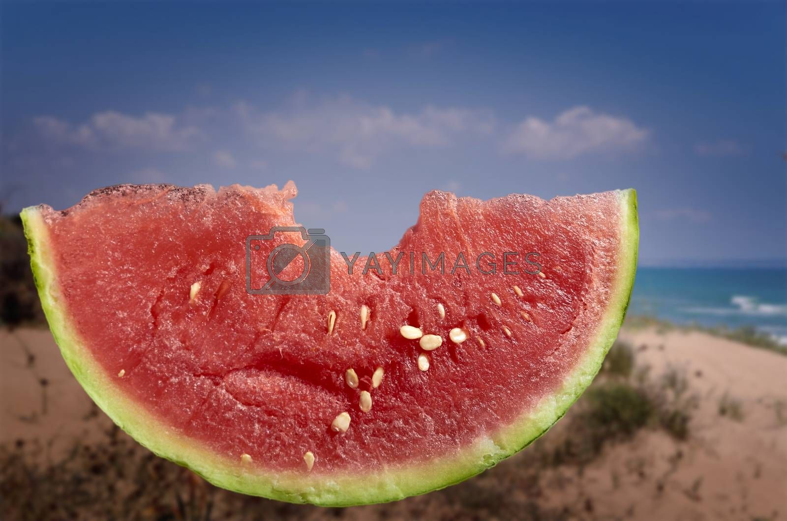 Slice of watermelon with bite and unfocused beach background