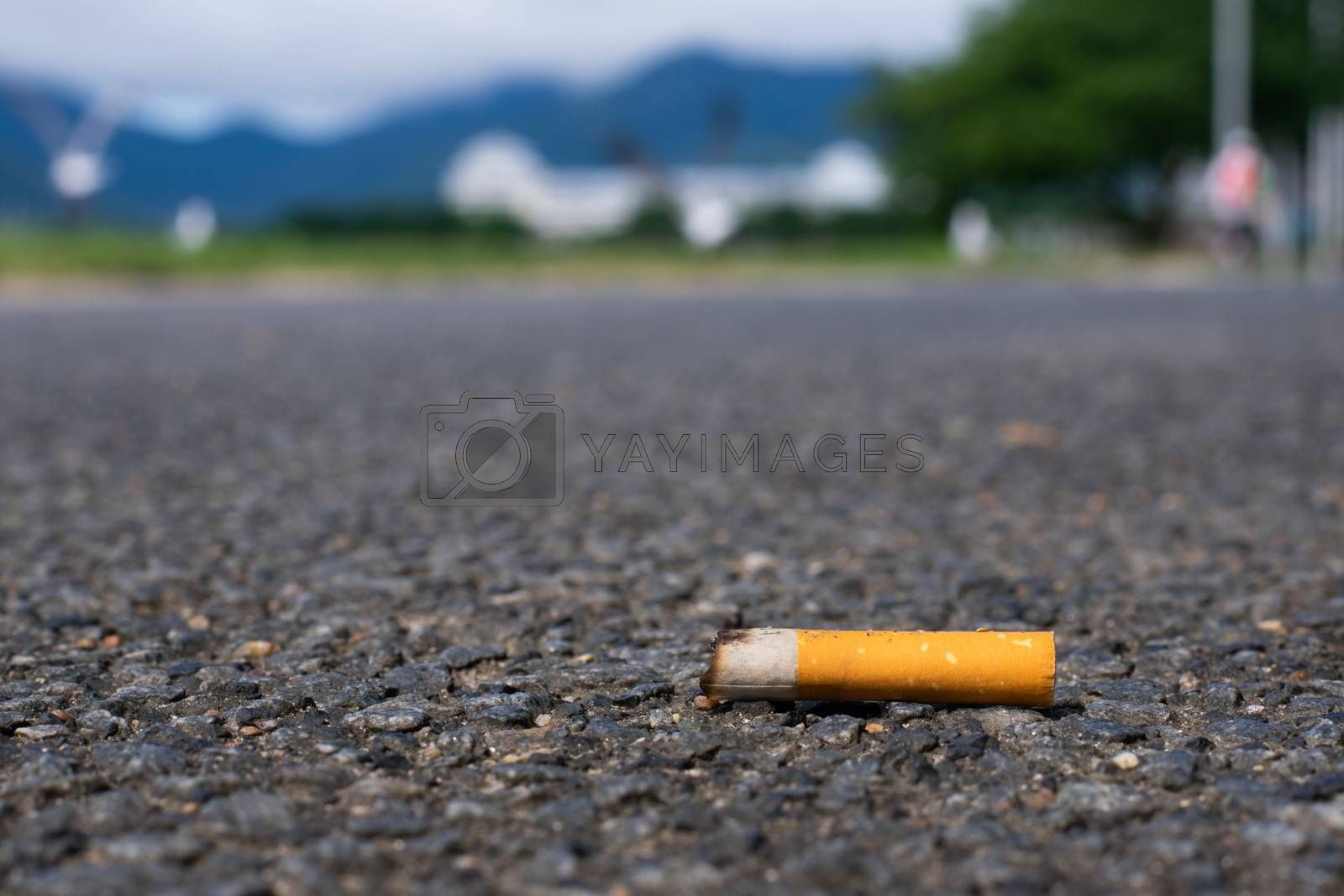 Cigarette littered on sidewalk