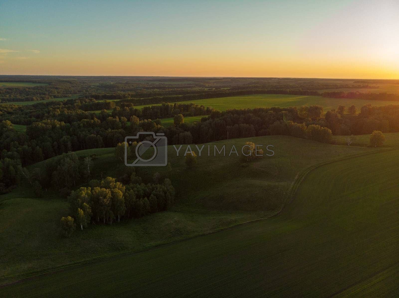 Top aerial view of green fields and meadows in evening summer. Landscape with drone in Altai
