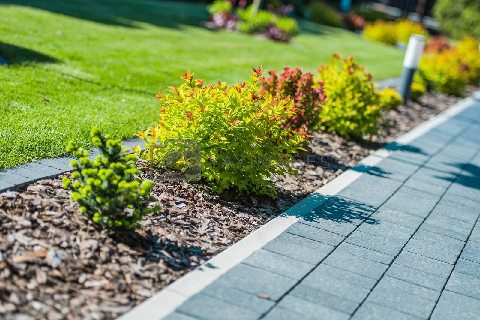 Royalty free image of Garden Brick Path Closeup by welcomia