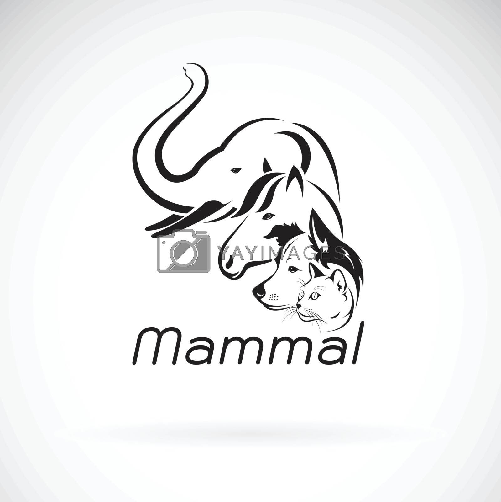 Vector of mammal group design on white background., Elephant, Horse. Dog. Cat.,  Animals. Pet. Mammal logo or icon. Easy editable layered vector illustration.