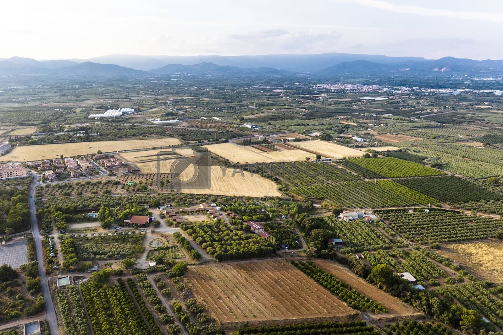 top view of crop fields near of the mountains in Tarragona, green field agriculture industry aerial view