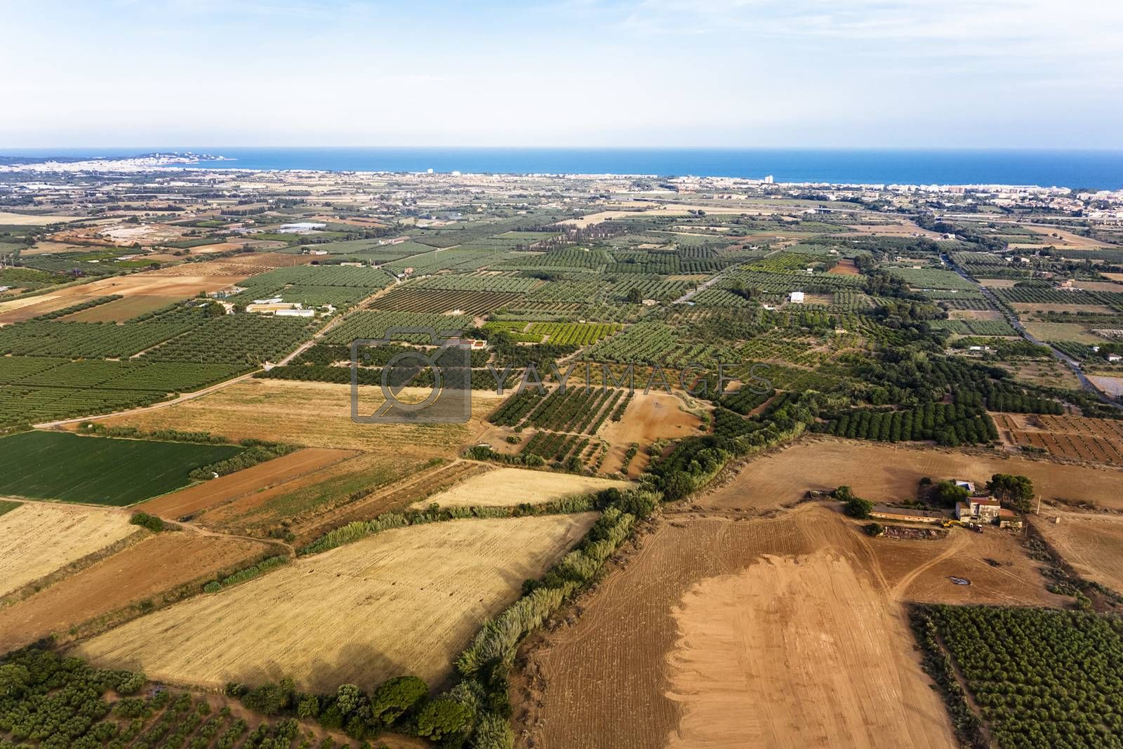 top view of crop farm fields near of Salou at the Mediterranean sea in Tarragona, background field agricultural industry aerial view