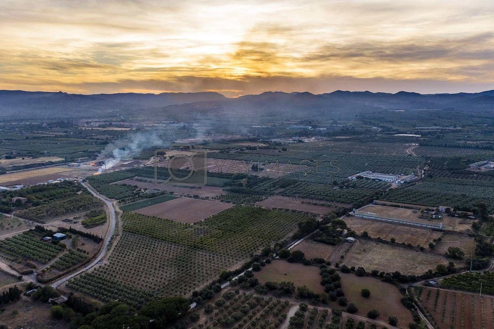 top view of fields and plantations at sunset near of the mountains in Tarragona, green field agriculture industry aerial view