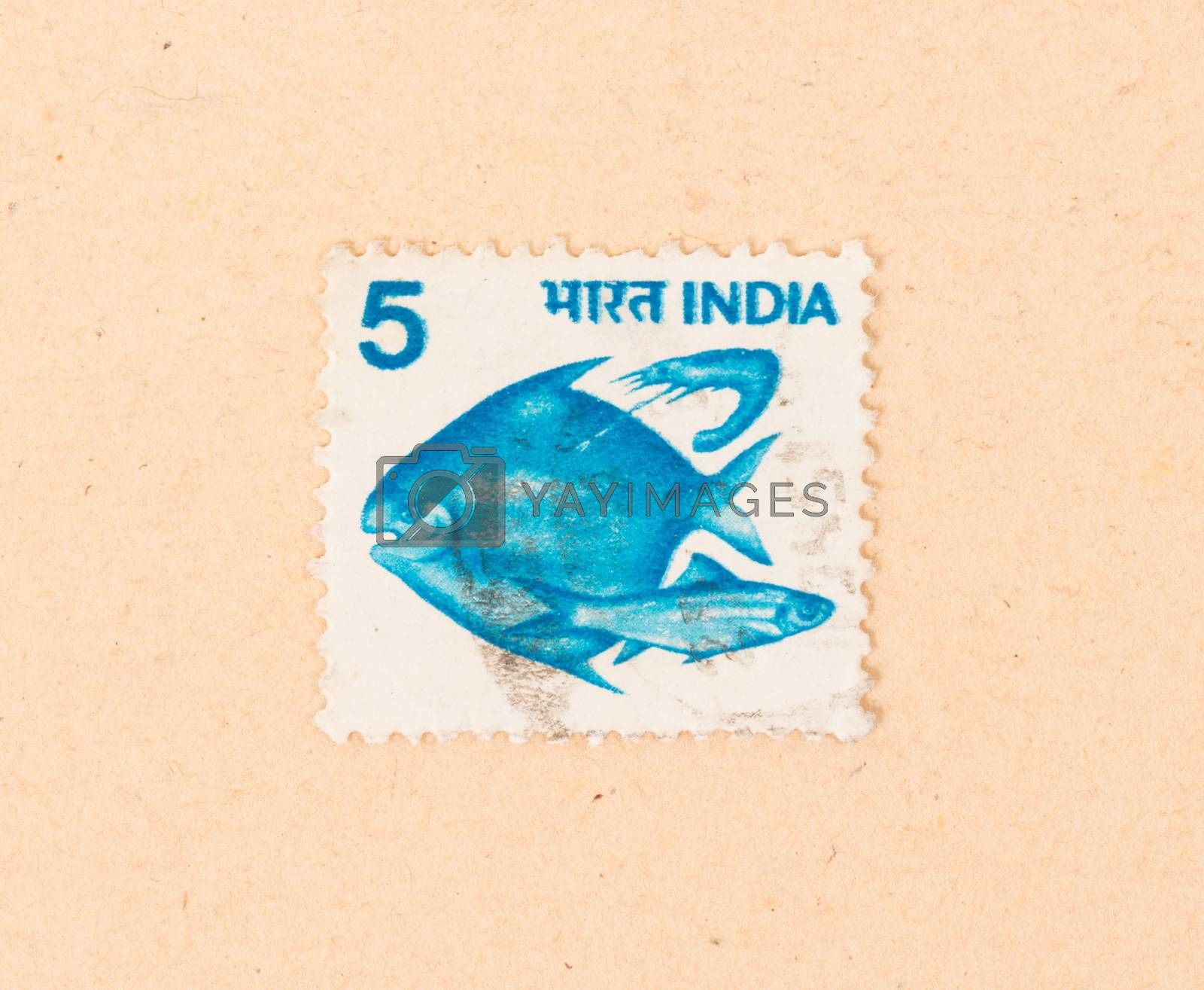 Royalty free image of INDIA - CIRCA 1970: A stamp printed in India shows some fish, ci by michaklootwijk