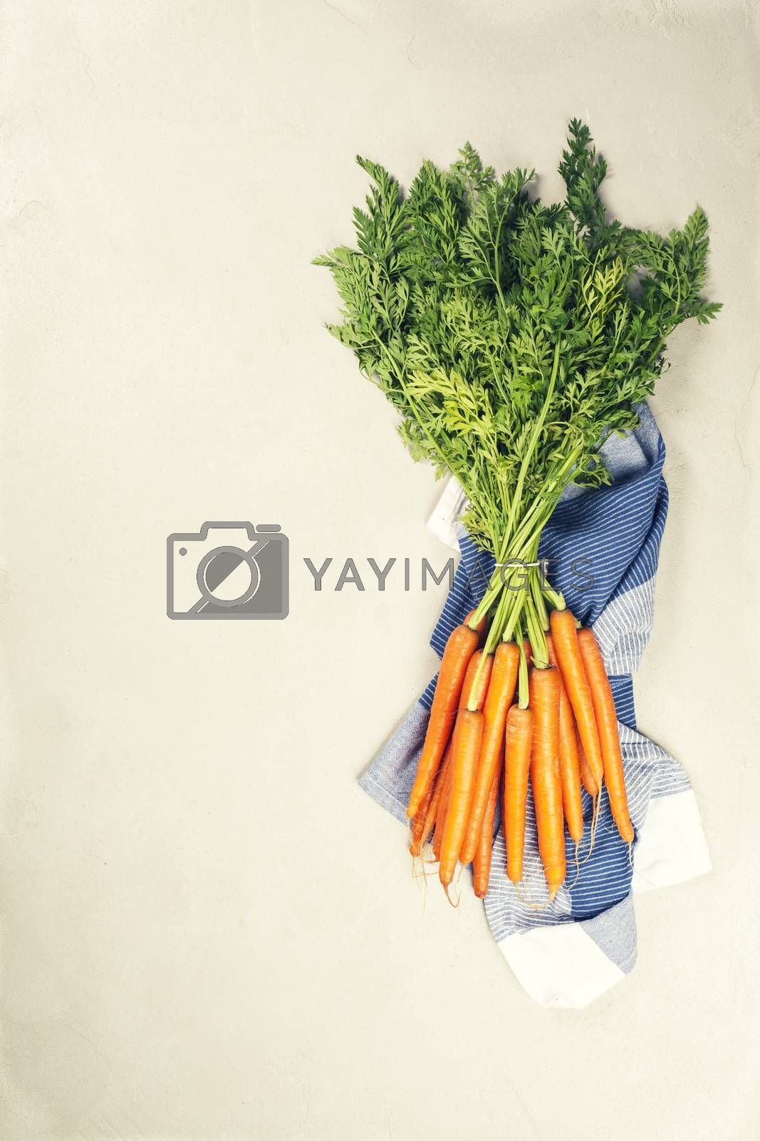Royalty free image of Fresh Carrots bunch. Raw fresh organic orange carrots. Healthy vegan vegetable food. by klenova