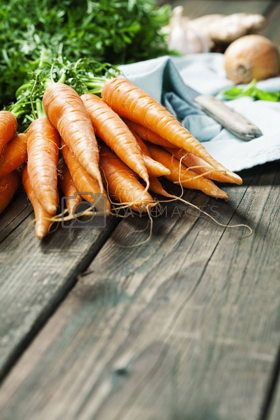 Royalty free image of Carrot. Fresh Carrots bunch on rustic background. by klenova