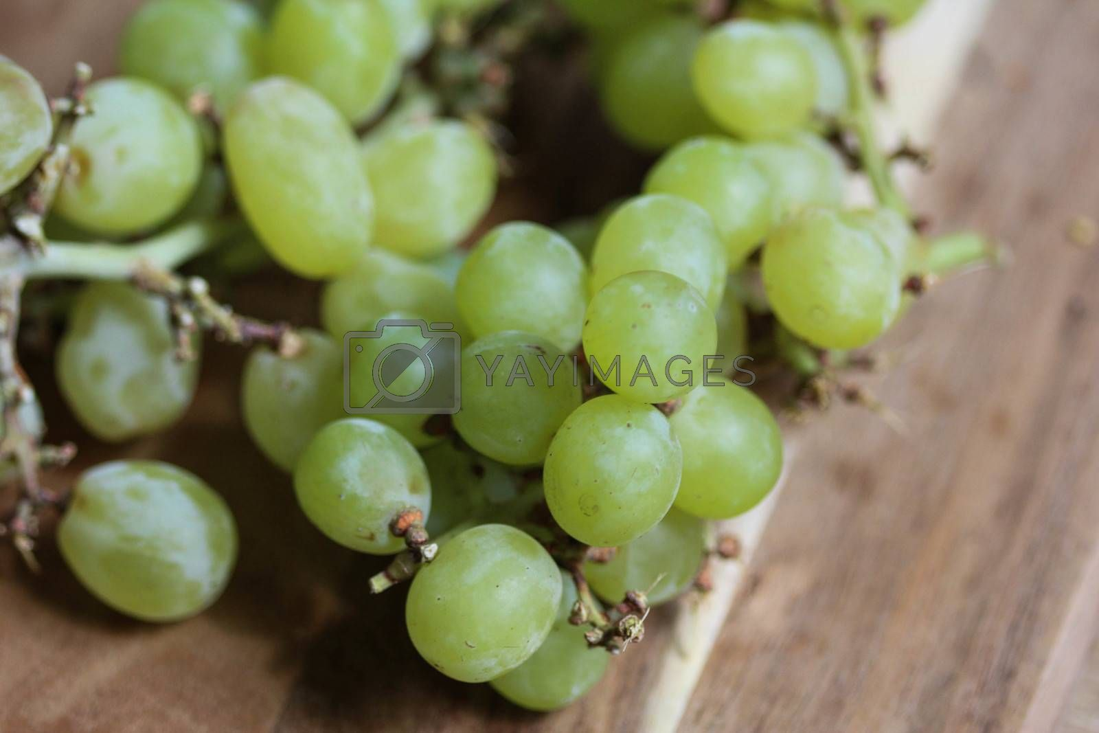 Royalty free image of bunch of fresh White grapes on wooden background by michaelmeijer