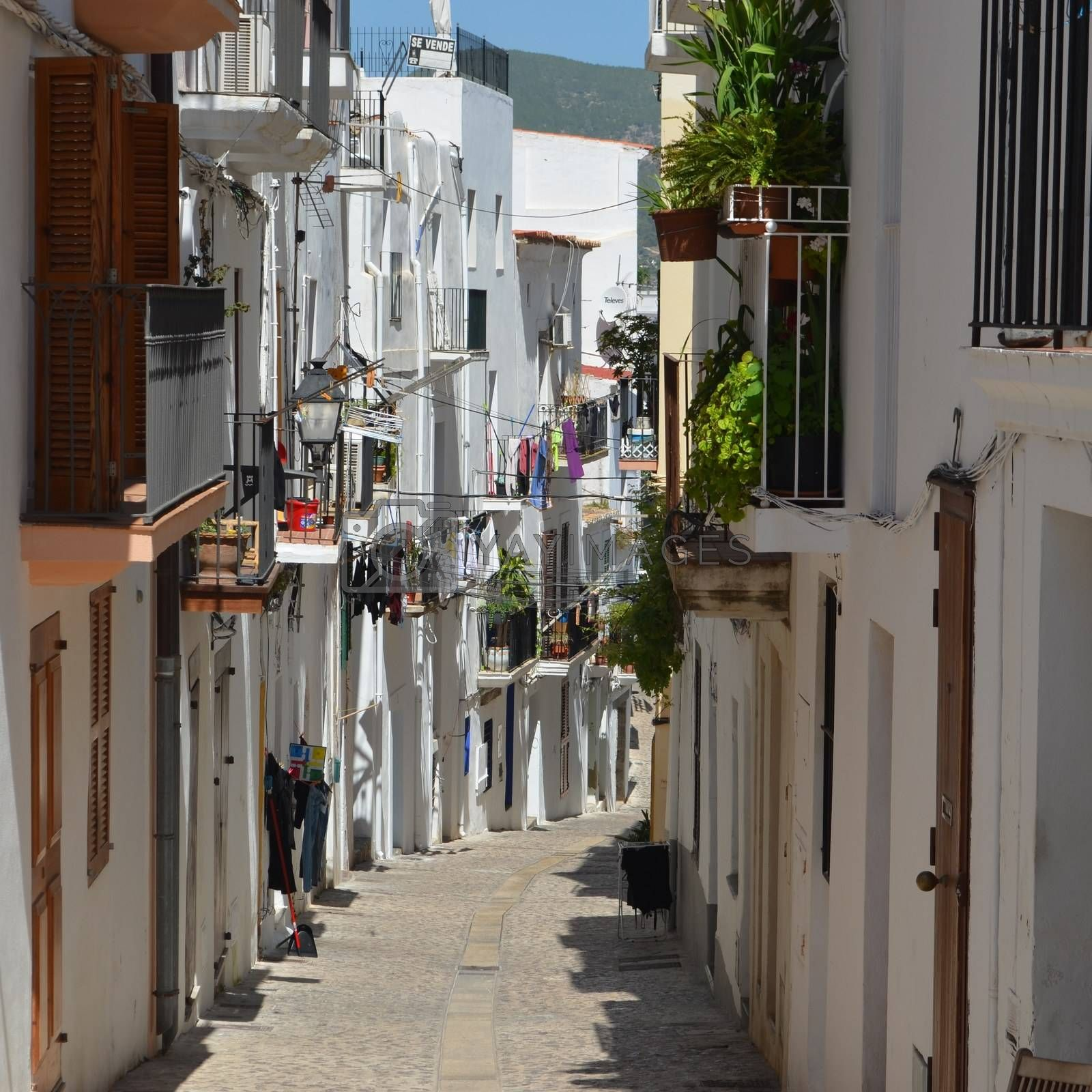 Narrow Side Streets with Houses in Ibiza Spain