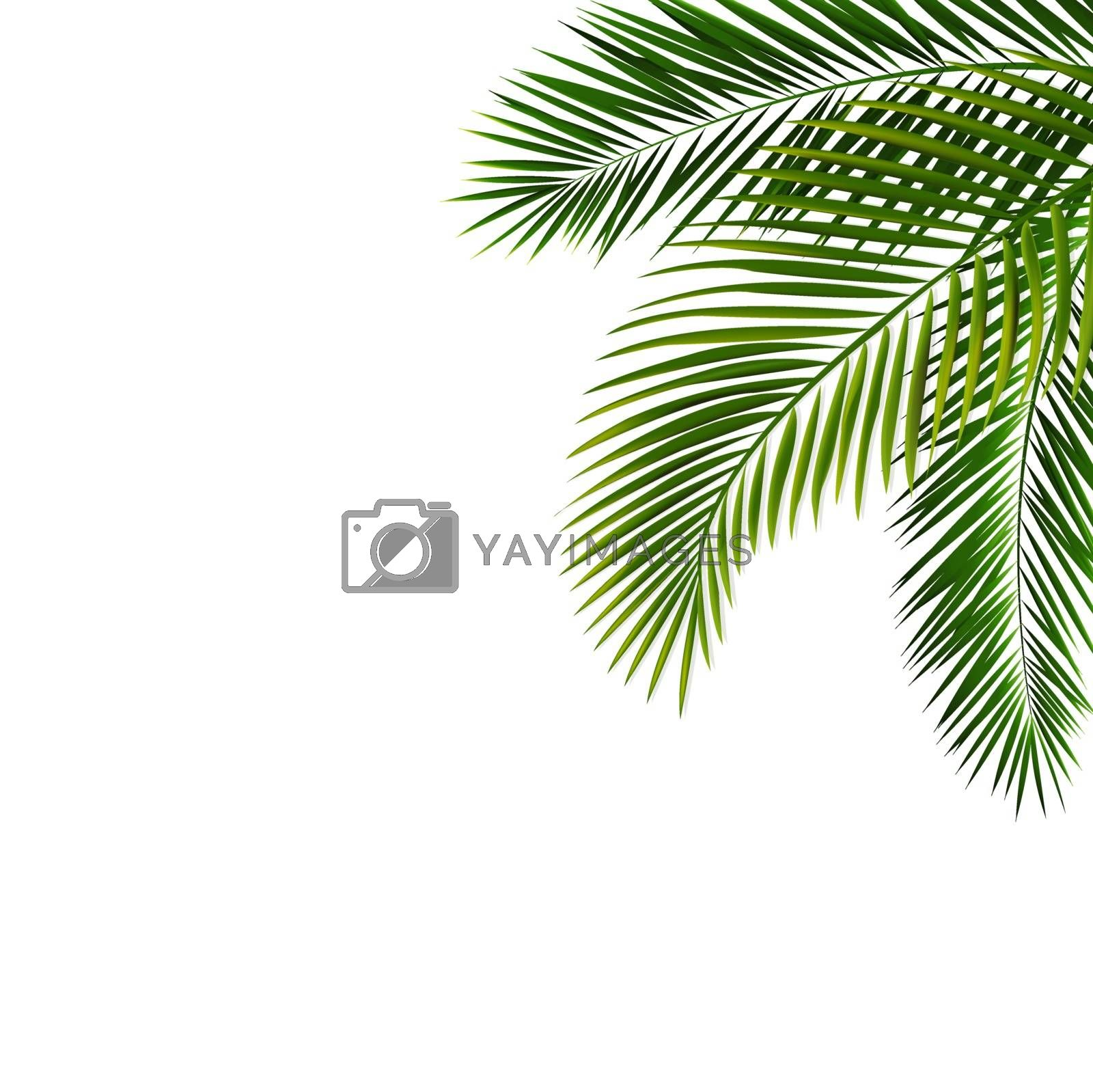 Border With Palm Leaf Isolated With Gradient Mesh, Vector Illustration