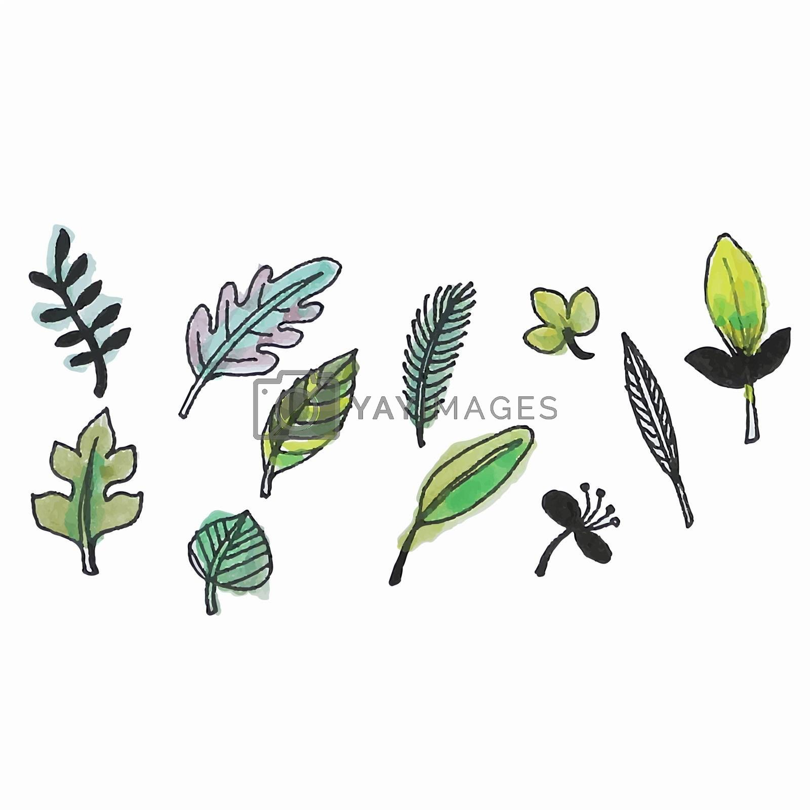 Freehand illustration of set of watercolor design leaves on white background, doodle hand drawn