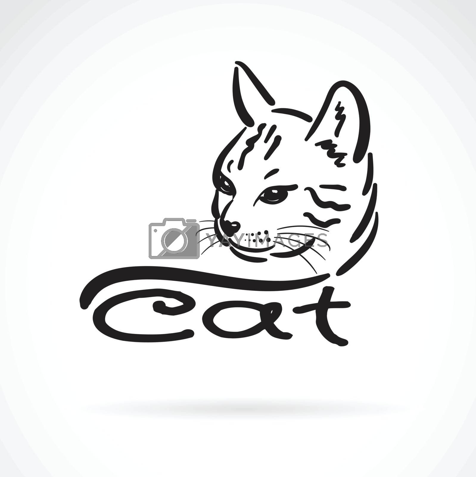 Vector of freehand cat head painting on white background. Pet. Animal. Easy editable layered vector illustration.