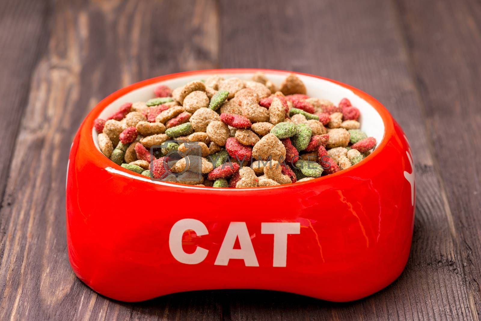 close-up red cat bowl with dry food on the floor at home