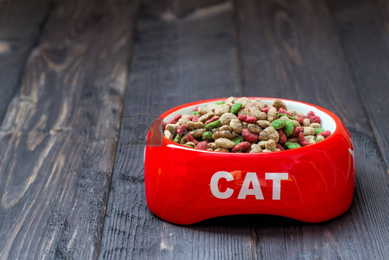 on a wooden floor a red bowl for a cat with dry food