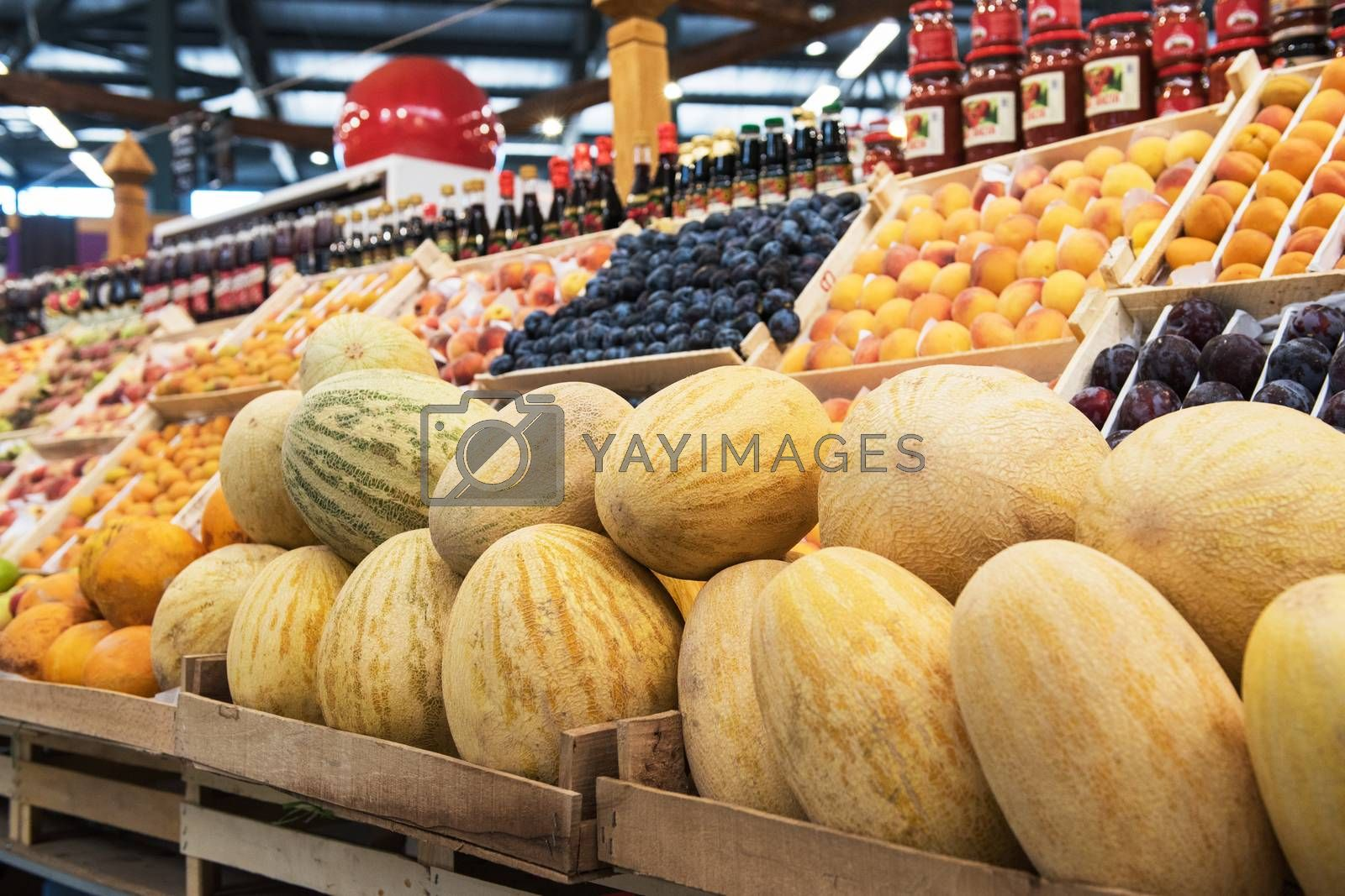 Ripe melons in farmer market: fresh organic healthy melons at grocery store.